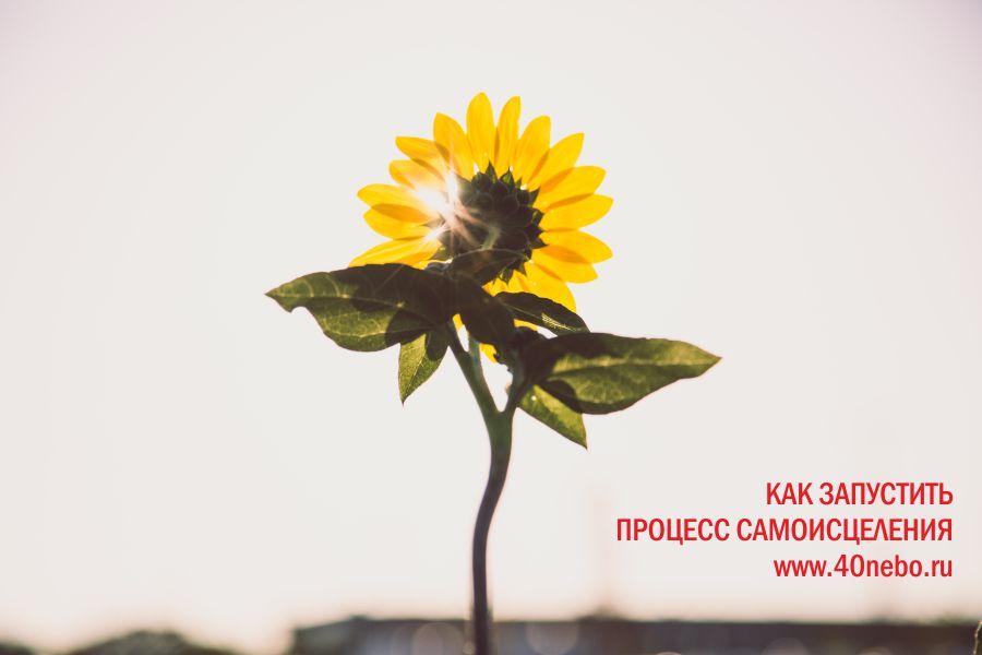 Как запустить внутренний механизм самоисцеления