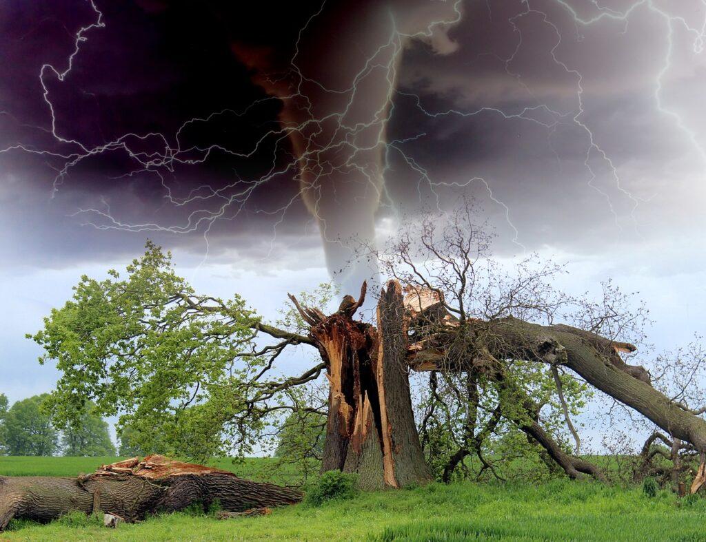 торнадо, беспокойство, тревога